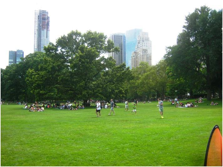 NYセントラルパークの広場シープメドウ。