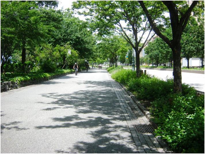 ハドソン川沿いの自転車道。