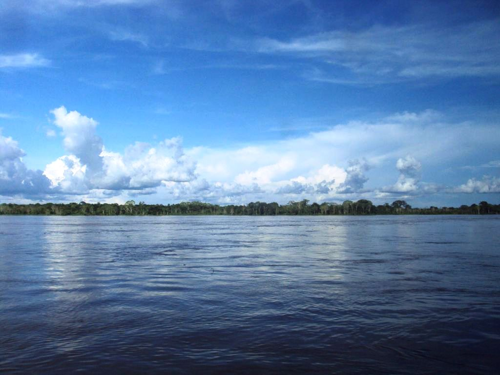 アマゾン:四方に密林の地平線。