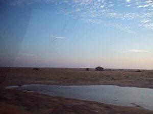 セチュラ砂漠。