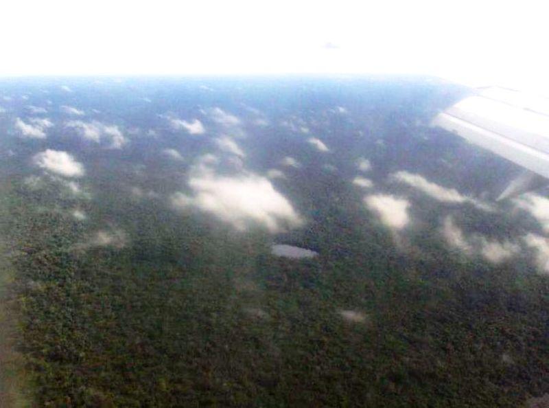 空から見たアマゾン密林。