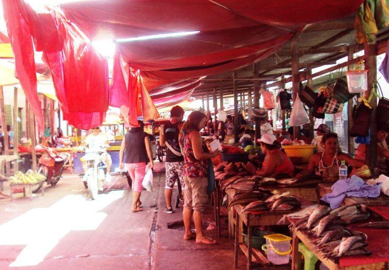 イキトス:アマゾン河岸の魚市場。