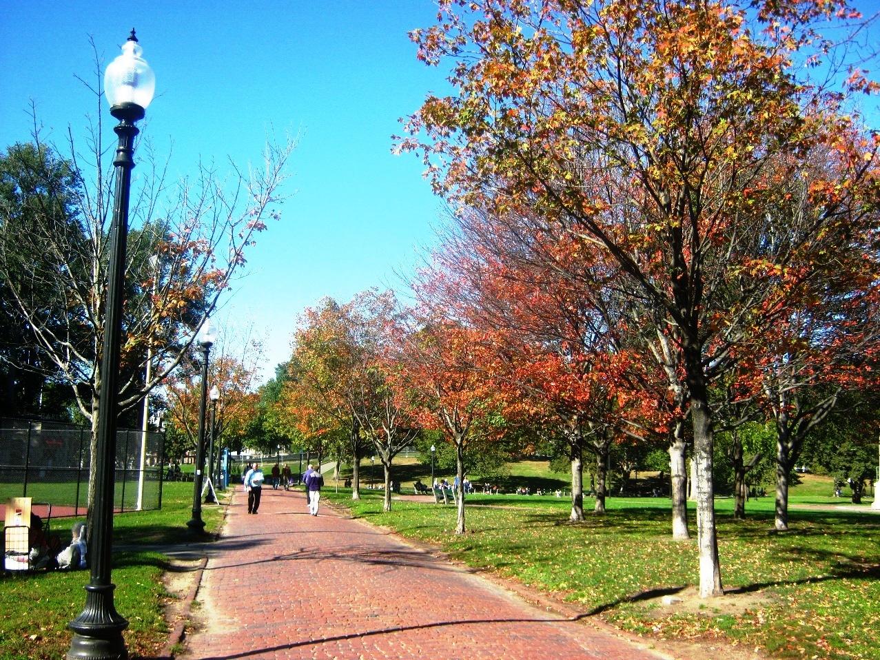 ボストン・コモンの紅葉。