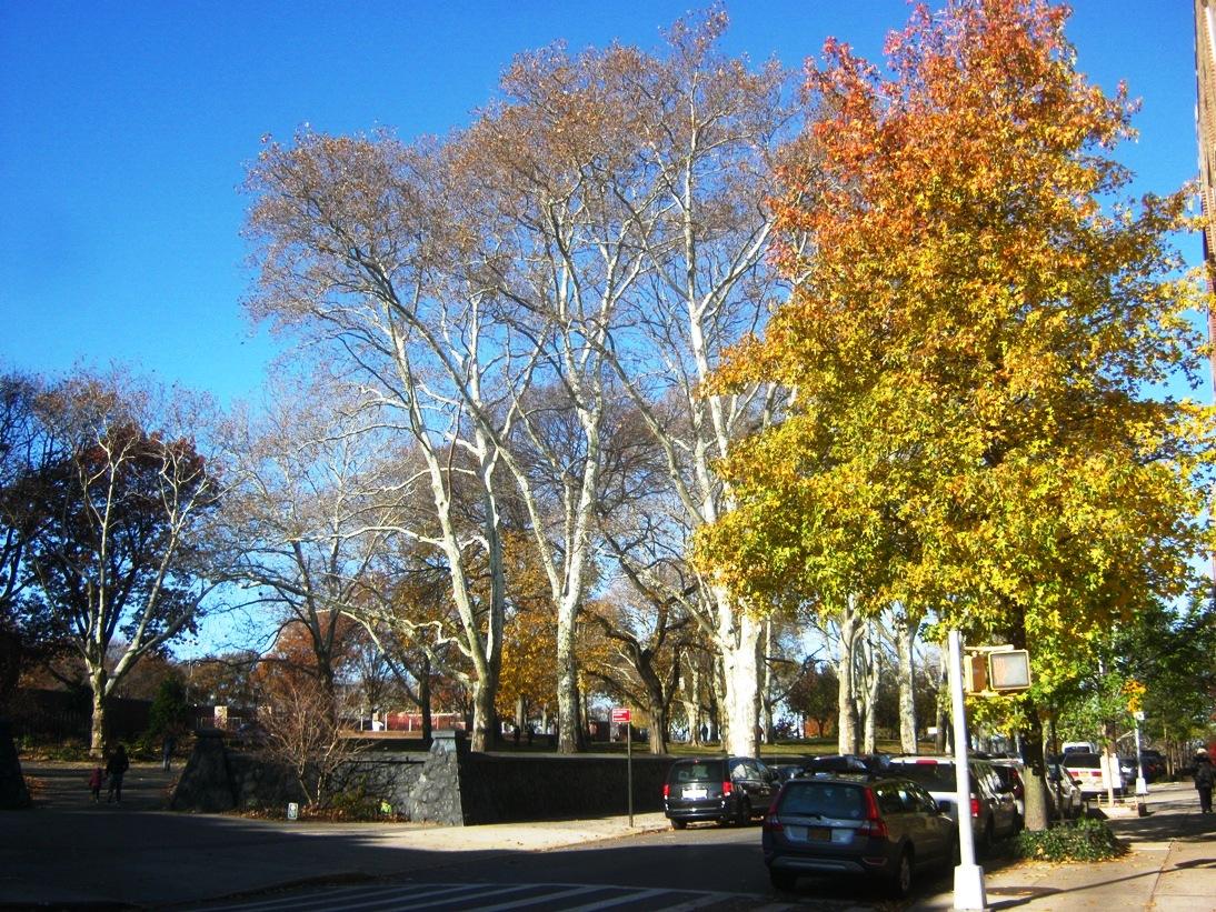 ブルックリン・サンセット公園の入口