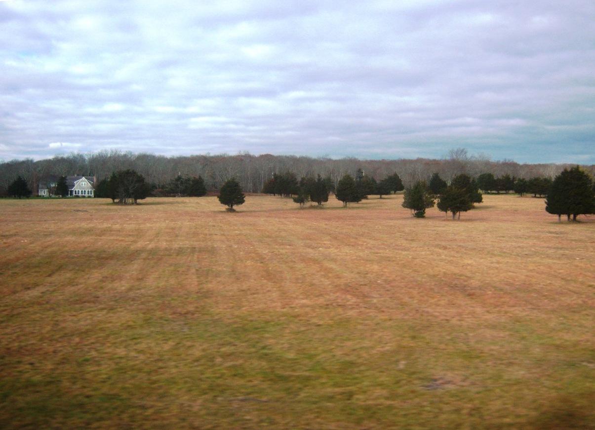 ロングアイランド東部の農地。