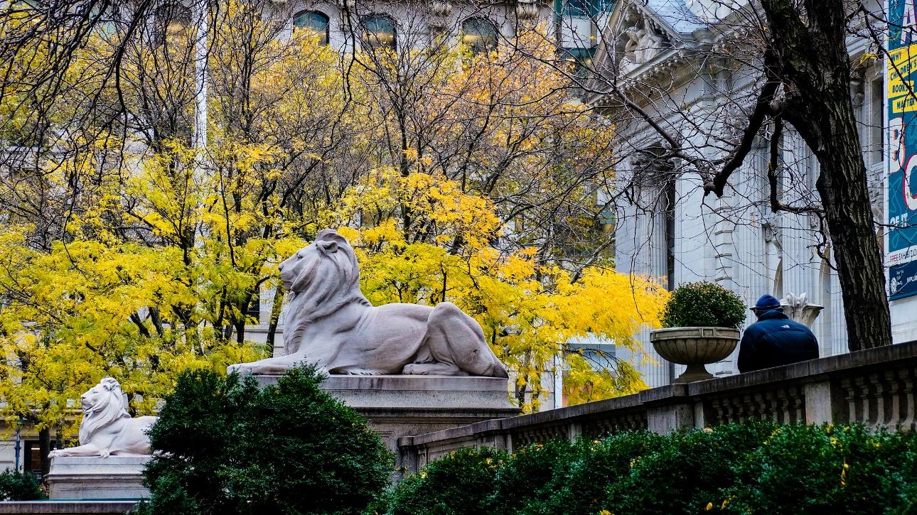 ニューヨーク公共図書館の前に立つ2頭のライオン像