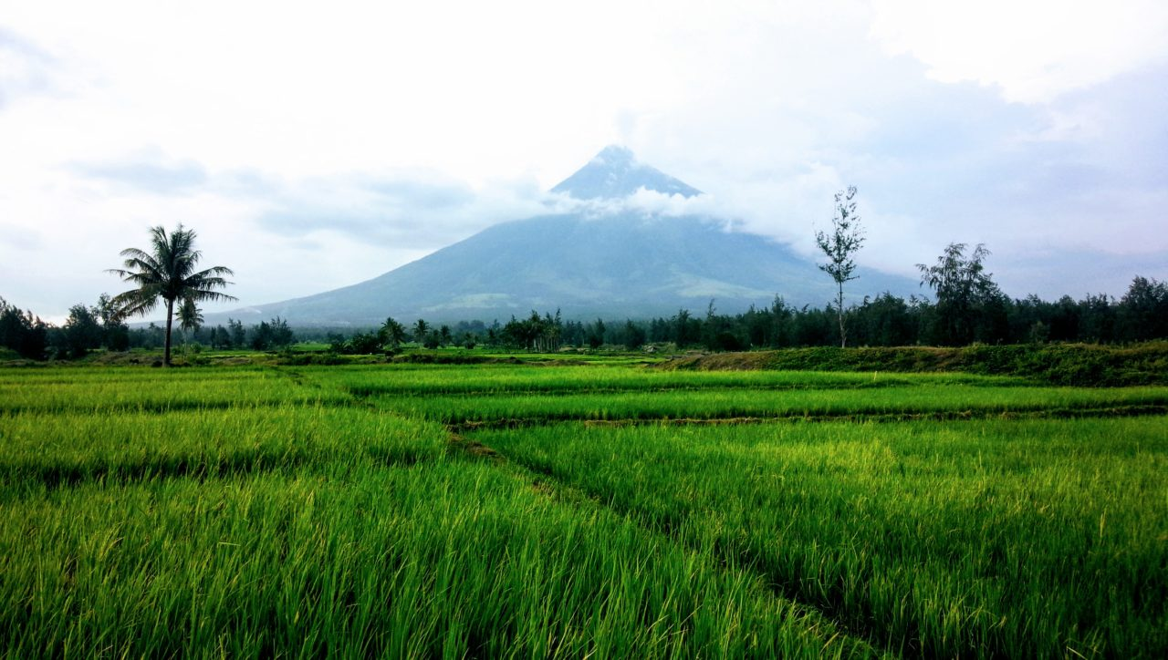 マヨン火山